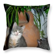 Too Cute Even If Classic Throw Pillow