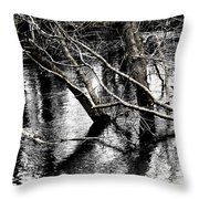 Too Much Of A Good Thing Throw Pillow