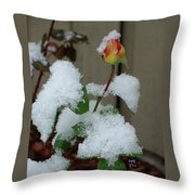 Too Soon Winter - Yellow Rose Throw Pillow