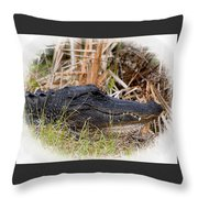 Alligator Toothy Grin 2 Throw Pillow