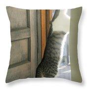 Tip Toe Cat Throw Pillow
