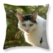 Top Cat Of The Ranch Throw Pillow