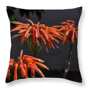 Top Of Aloe Vera Throw Pillow