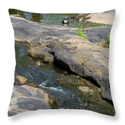 Top Of Noccalula Falls Throw Pillow