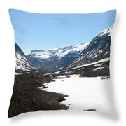 Top Of Rv 63 Throw Pillow