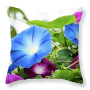 Top Of The Morning Glories Throw Pillow