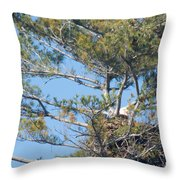 Top Of The Pine Throw Pillow