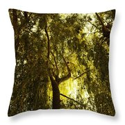 Top View Throw Pillow
