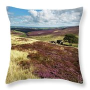 Top Withins On Haworth Moor Throw Pillow