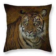 Topaz Tiger  Throw Pillow