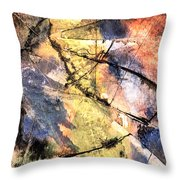 Topographical Throw Pillow