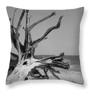 Toppled Tree Throw Pillow