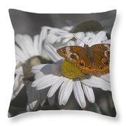 Topsail Butterfly Throw Pillow