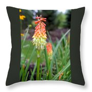 Torch Lily Flower Throw Pillow
