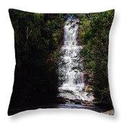 Toron Falls Throw Pillow