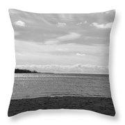 Toronto Winter Beach Throw Pillow
