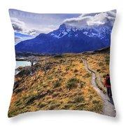 Torres Del Paine 21 Throw Pillow