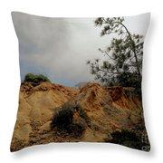 Torrey Pines-2 Throw Pillow