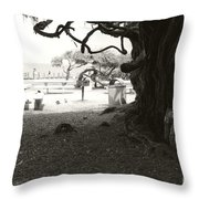 Torrey Pines Baggage Claim Throw Pillow