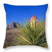 Torrey Yucca Throw Pillow