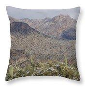 Tortolita Mountains Snowy Sunrise Throw Pillow