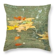 Tossed Leaves Throw Pillow by JAMART Photography