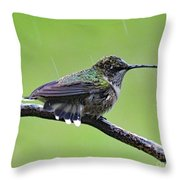 Totally Wet But Beautiful - Ruby-throated Hummingbird Throw Pillow