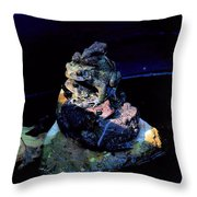 Totem Frogs Throw Pillow