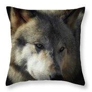 Totem, No. 3 Throw Pillow