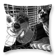 Toto Checks In Throw Pillow