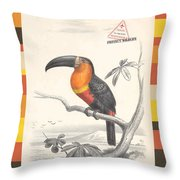 Toucan Bird Responsible Travel Art Throw Pillow