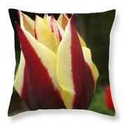 Touch Me In The Morning Throw Pillow