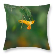 Touch Me Not Curve Throw Pillow