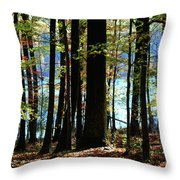 Touch Of Autumn Throw Pillow