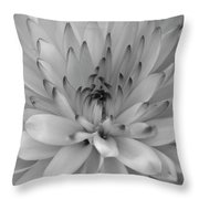 Touch Of Black Throw Pillow