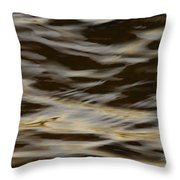Touch Of Mink Throw Pillow