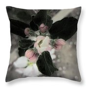 Touch Of The Past Throw Pillow
