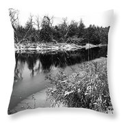 Touch Of Winter Black And White Throw Pillow