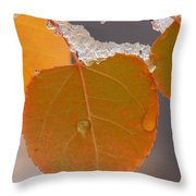 Touch Of Winter Throw Pillow