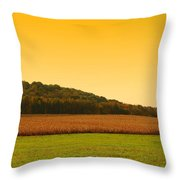 Touched By Golden Light - Battlefield Orchards Throw Pillow
