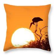 Touching The Sun Throw Pillow