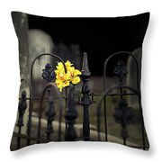 Toujours Souvenu Throw Pillow