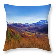 Toutle River Throw Pillow