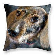 Toutou 7 Throw Pillow