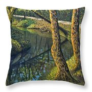 Tow Path Throw Pillow by Don Perino