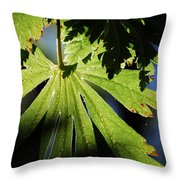Toward The Secret Garden Throw Pillow