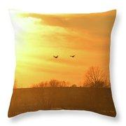 Towards Sunset Throw Pillow