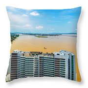 Tower And Guayas River Throw Pillow