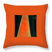 Tower Of Power? Throw Pillow