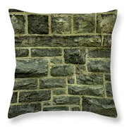 Tower Wall Throw Pillow